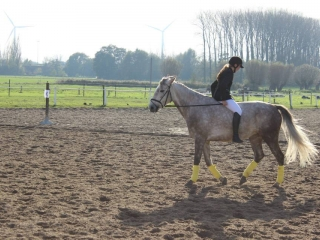 Manege 't Gavergoed