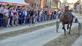 Winkel Koerse paarden race wedstrijd rennen Sint Eloois Ledegem